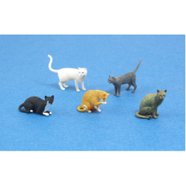 Matho Models Cats