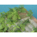 1:32 scale vegetation